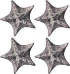 Supersalta sjöstjärnor 1,54kg