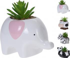 Djurkruka med växt