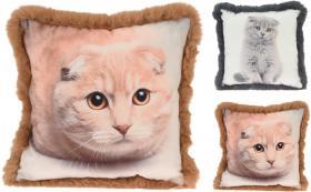 Komplett kudde med kattmotiv