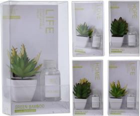 Doftset -Kaktus