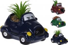 Växt i bil