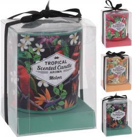 Doftljus i presentförpackning -Tropical