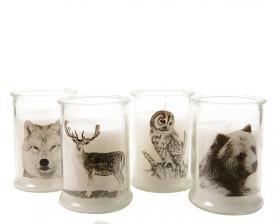 Ljus i glaskopp -Vilda djur
